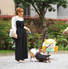 桐島有希のプロフィール画像 7