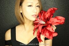 藤咲麻耶のプロフィール画像